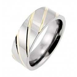 Titanium Band Ring with Gold Lines